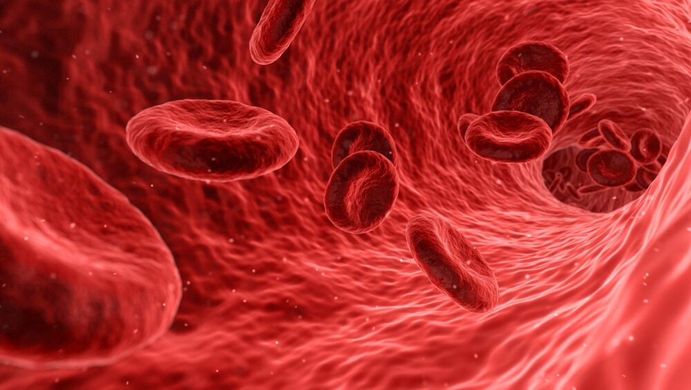 , Top 5 Natural Ways to boost your immune system